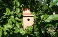Πανελλήνιος Διαγωνισμός Κατασκευής Ξύλινης Φωλιάς για πουλιά