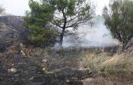 Φωτιά ξέσπασε δίπλα από το Άλσος Βεΐκου