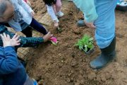 «Η σπορά, τρόπος ζωής» στον Β' Παιδικό Σταθμό του Δήμου μας