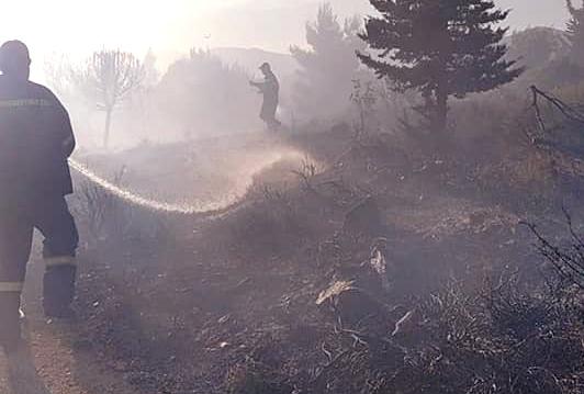 Από πιθανό εμπρησμό η χθεσινή φωτιά στο Άλσος Βεΐκου και την αναδασωτέα περιοχή